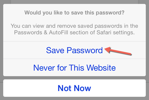 View Saved Passwords on iPhone & iPad in Safari 1.png