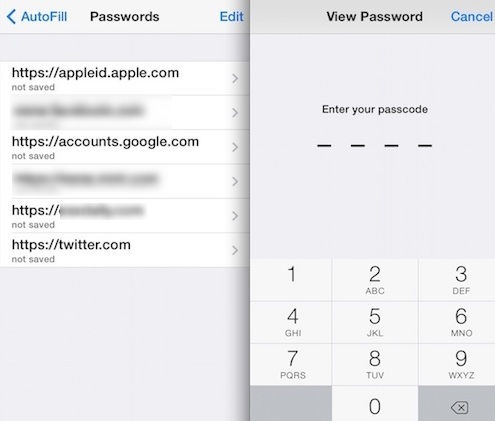 View Saved Passwords on iPhone & iPad in Safari 3.png